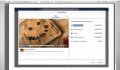 Facebook Releases New Metrics For Video Advertising